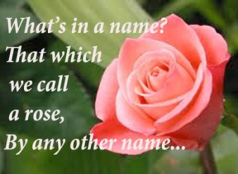 A rose by any other name would smell as sweet