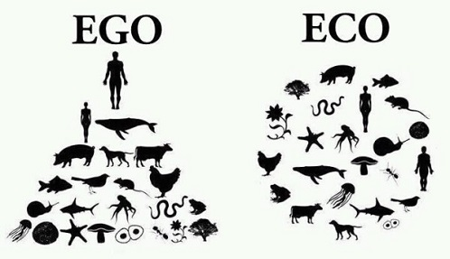 ego_to_eco